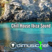 VA - Chill House Ibiza Sound (2012)