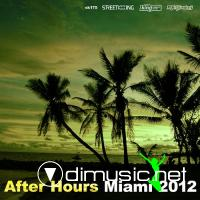 VA - After Hours: Miami 2012 (2012)