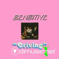 Sensitive - Driving (1984) (Top Italo-Disco)