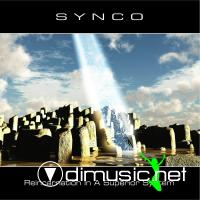 Synco - Reincarnation In A Superior System (1993)