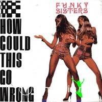 Funky Sisters - How Could This Go Wrong (1990)