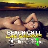 VA - Beach Chill Las Salinas: The Ibiza Chill Out Album (2012)
