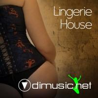 VA - Lingerie House Vol 1 (2011)