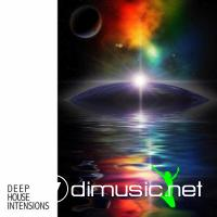 VA - Deep House Intensions (2012)