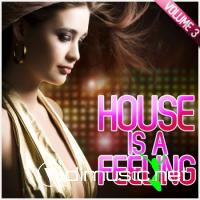 VA - House Is A Feeling Vol. 3 (2012)