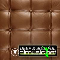 VA - Deep & Soulful Vol 6 (A Collection Of Sophisticated House Sounds)