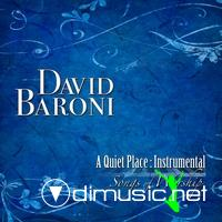 David Baroni - Collections (RARE)