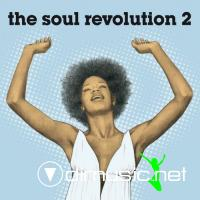 VA - The Soul Revolution 2 (2012)