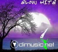 Collection of Slow Hits Vol 2 2012