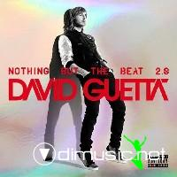 David Guetta - Nothing but the Beat 2.0 2012