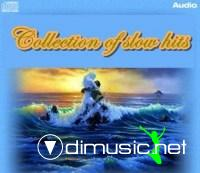 Collection of Slow Hits Volume.7 (2012)