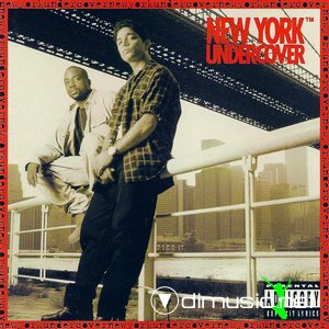 VA - New York Undercover (1995)