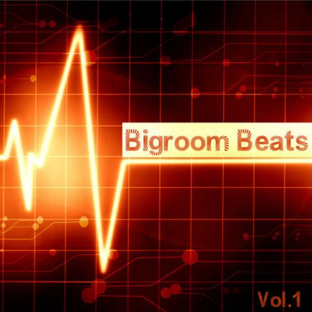 VA - Bigroom Beats Vol.1 (2012)