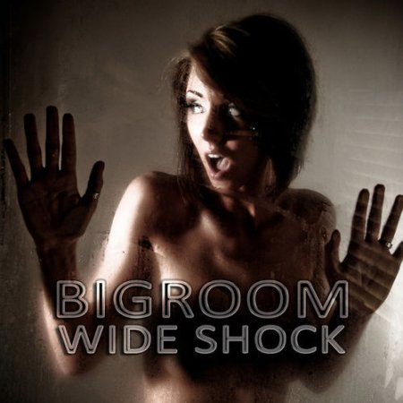 VA - Bigroom Wide Shock (2012)
