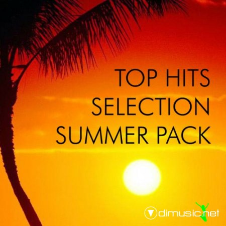VA - Top Hits Selection Summer Pack (2012)