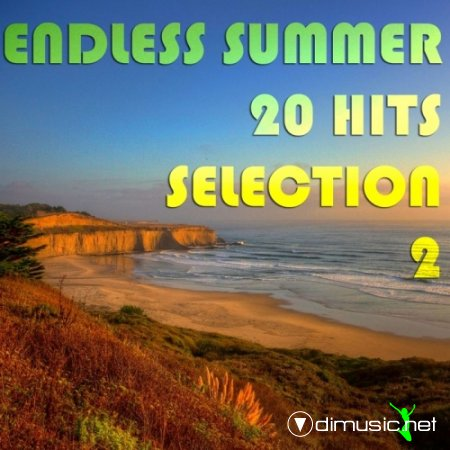 VA - Endless Summer 20 Hits Selection 2 (2012)