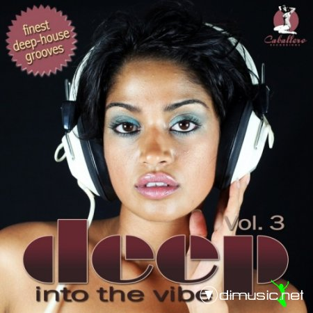 VA - Deep Into The Vibe Vol 3 (2011)