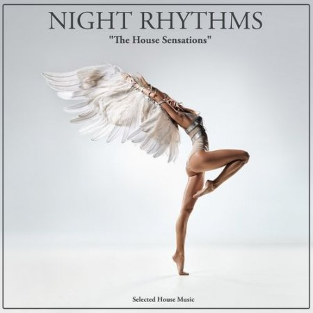 Cover Album of Night Rhythms: Selected House Music (2012)