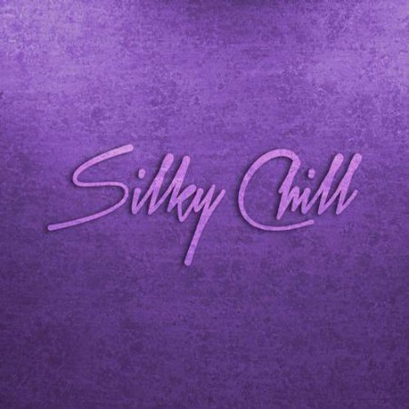 Silky Chill: Chill House and Chill Out (2012)