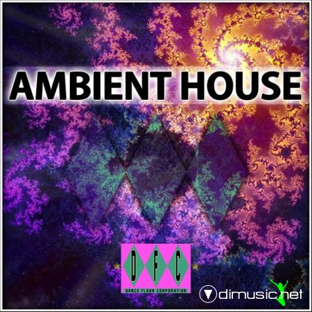VA - The Original Ambient House Experience (2011)