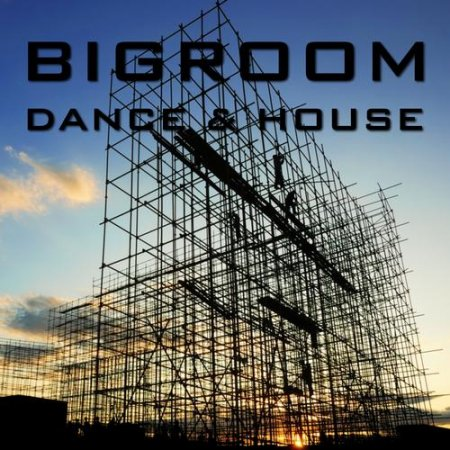 Bigroom Dance and House (2012)