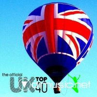The Official UK Top 40 Singles Chart 01-02 (2013)