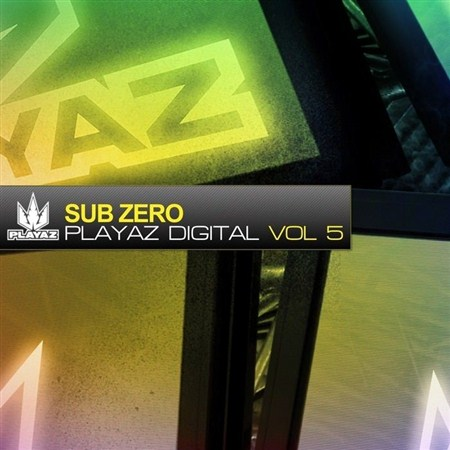 Playaz Digital Vol 5 (2013)