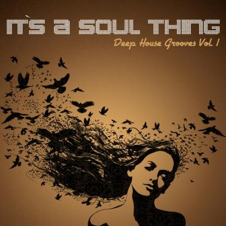 It's a Soul Thing: Deep House Grooves Vol.1 (2013)