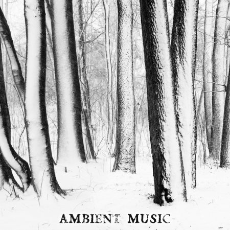 Ambient Music (2013)
