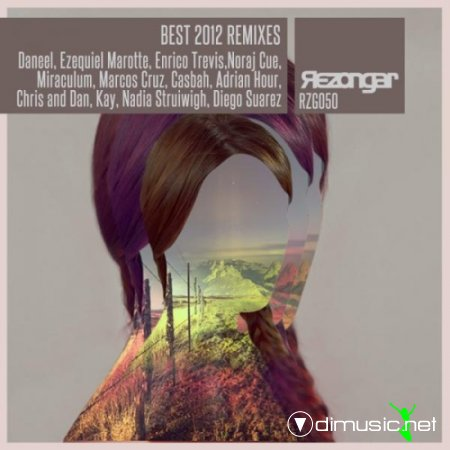 VA - Best 2012 Remixes (2013)