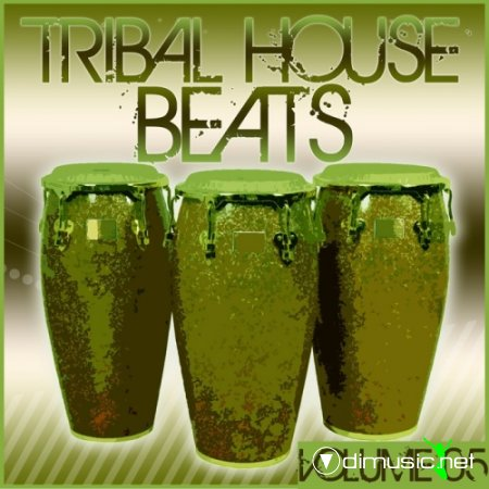 VA - Tribal House Beats Vol. 5 (2012)