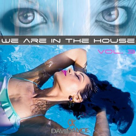 We Are in the House Vol 3 (2013)