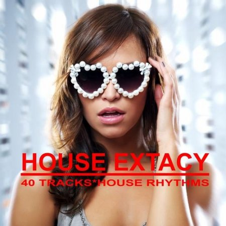 House Extacy 40 Tracks - House Rhythms (2013)