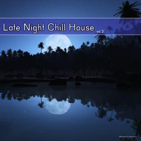 Late Night Chill House Vol 3 (2013)