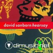 David Sanborn - Hearsay (CD, Album) 1994