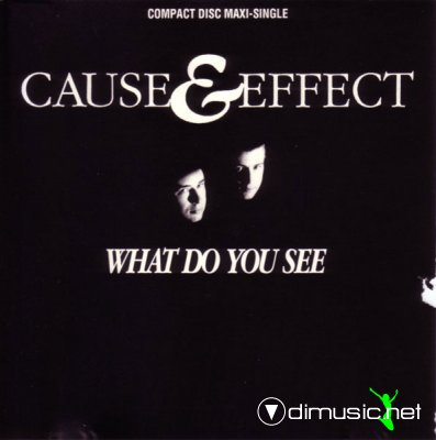 Cause & Effect - What Do You See (CD, Maxi-Single) 1990
