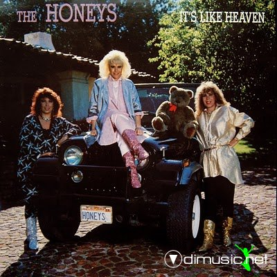 The Honeys - It's Like Heaven (1986) (VERY RARE)