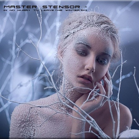 Master Stensor - In No Hurry To Leave The Winter (2013)