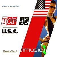 USA Hot Top 40 Singles Chart (4-May-2013 )