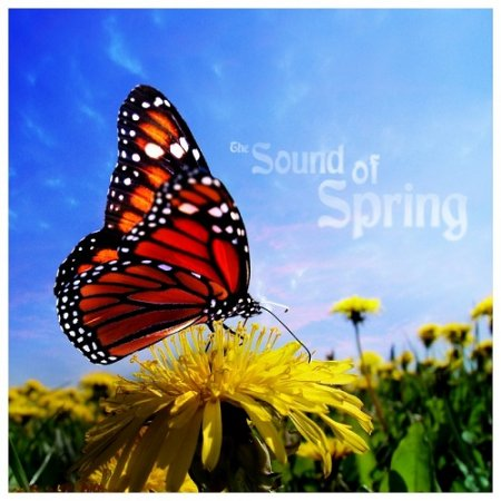 The Sound of Spring (2013)