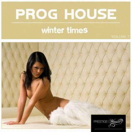 Progressive House Winter Times (2013)