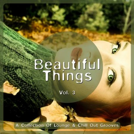Beautiful Things Vol 3 A Collection Of Lounge and Chill Out Grooves (2013)