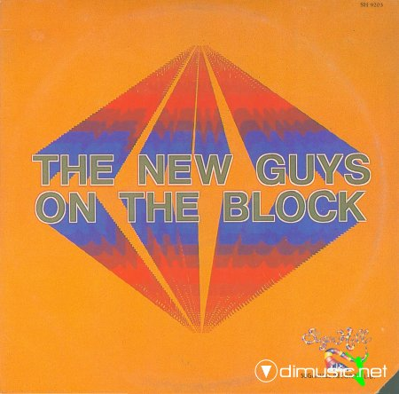 The New Guys On The Block - The New guys on the block (1984) lp