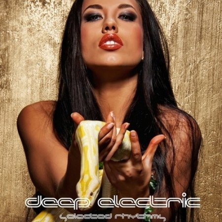 Deep Electric Selected Rhythms (2013)