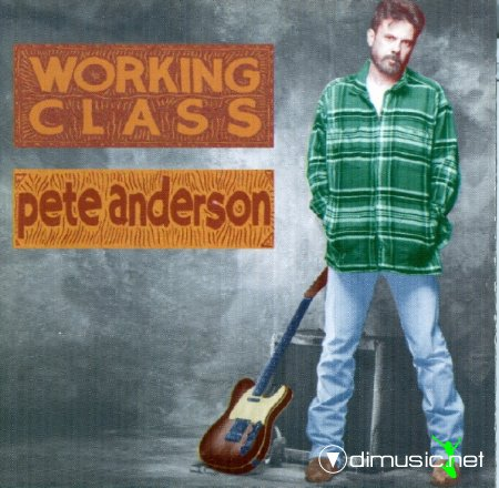 Pete Anderson - Working Class (CD, Album) 1994