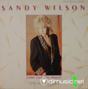 Sandy Wilson - Gimme Your Love Tonight (Vinyl, 12'') 1986