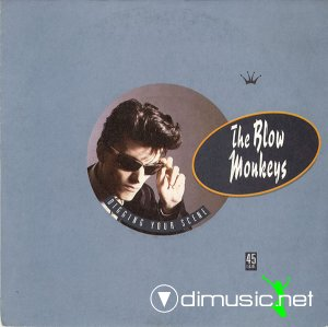 The Blow Monkeys - Digging Your Scene (Vinyl, 12'') 1986