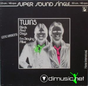 The Twins - Birds And Dogs (Vinyl, 12'') 1982