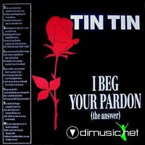 Tin Tin - I Beg Your Pardon (The Answer) (Vinyl, 12'') 1989