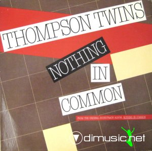 Thompson Twins - Nothing In Common (Vinyl, 12'') 1986